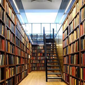 Библиотеки Новой Малыклы